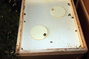 Zwischenboden mit zwei Bienenfluchten